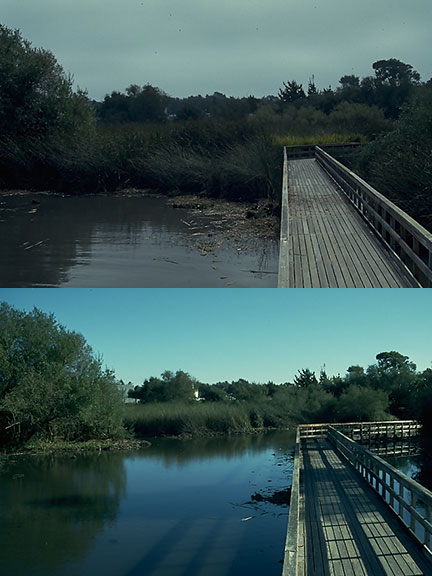 Lagoon-1 - Copy
