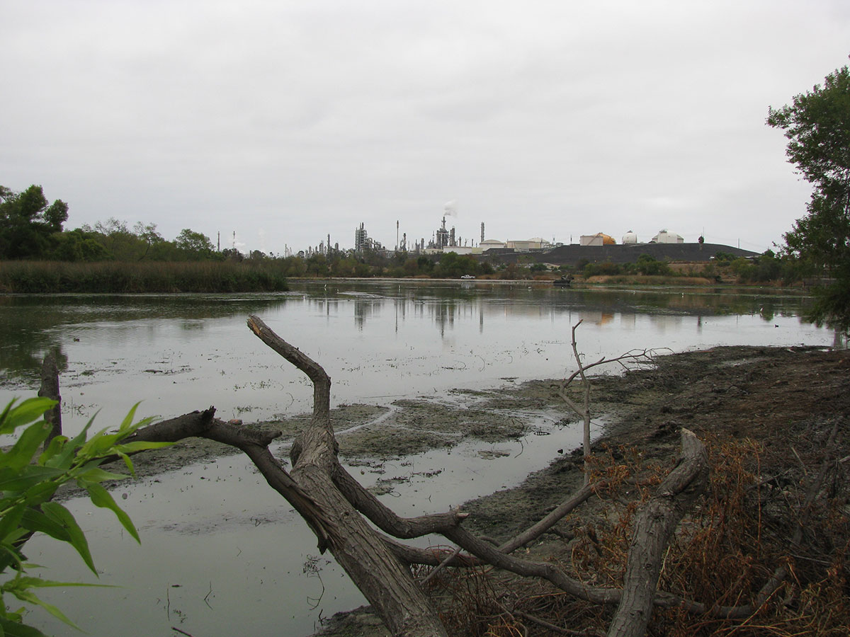 Lake-Machado-After-01