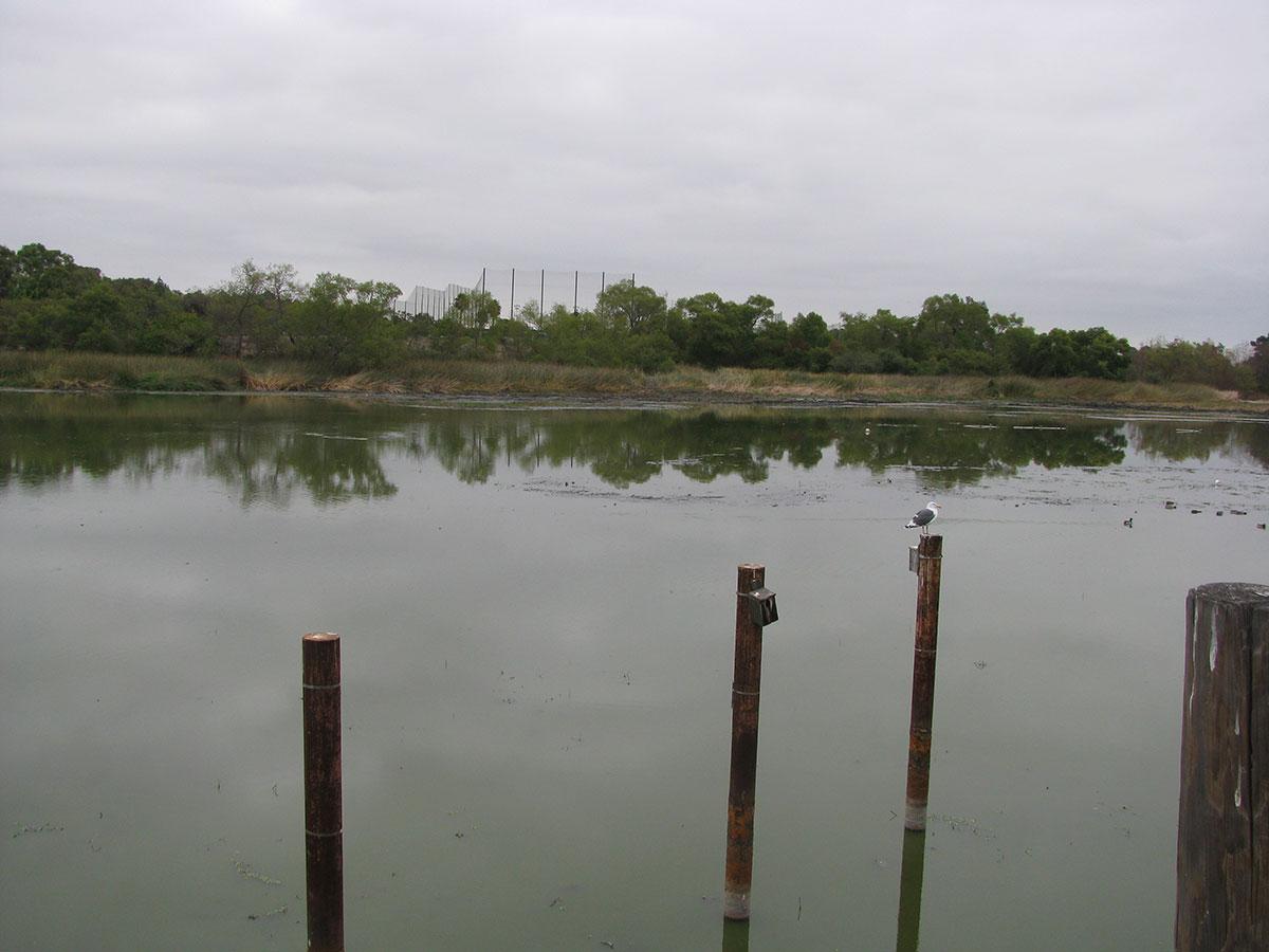 Lake-Machado-After-08