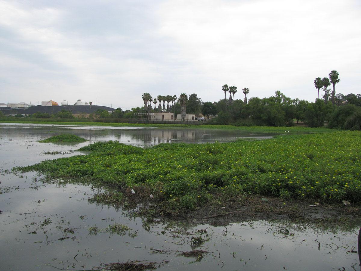 Lake-Machado-Before-04