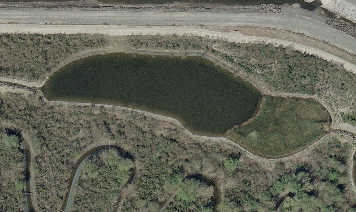 Pond-C-After